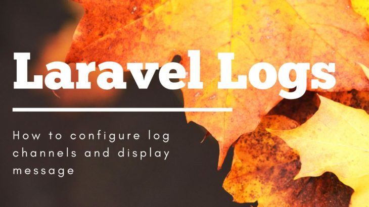 Laravel-Logs-with-example